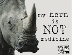 The NICM's business partner sent to jail for importing Rhino horn into Australia!